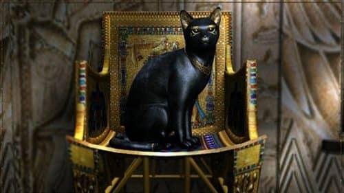 Коты в древним египте